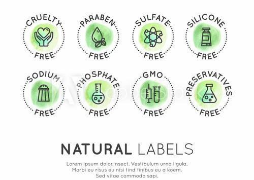 Ingredients 101 – Sulphate, Paraben, and Silicones