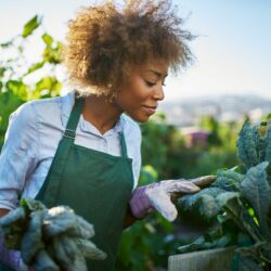 Nutrients Count – Does Low Serum Folate (aka Folic Acid) Cause Hair Loss?